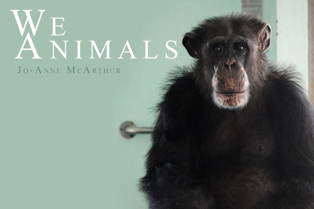 book_weanimals