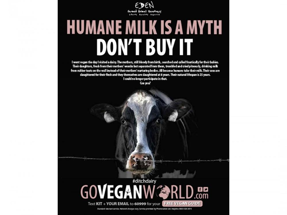vegan-world-milk-ad
