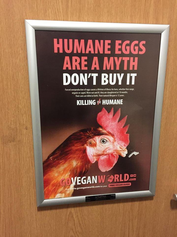 goveganworld2