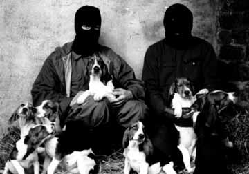 Interfauna-raid-1990